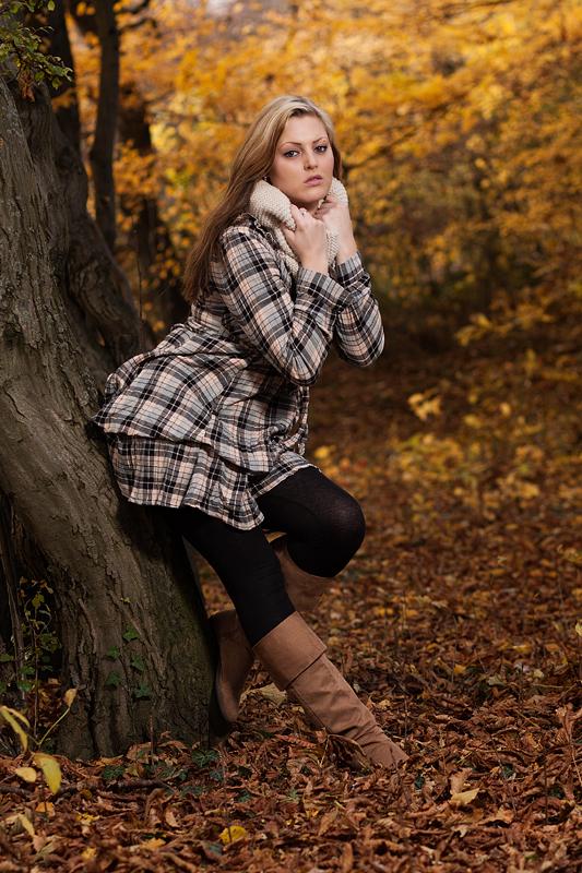 Foto zum Blogartikel - Ein kleines Stückchen Wald