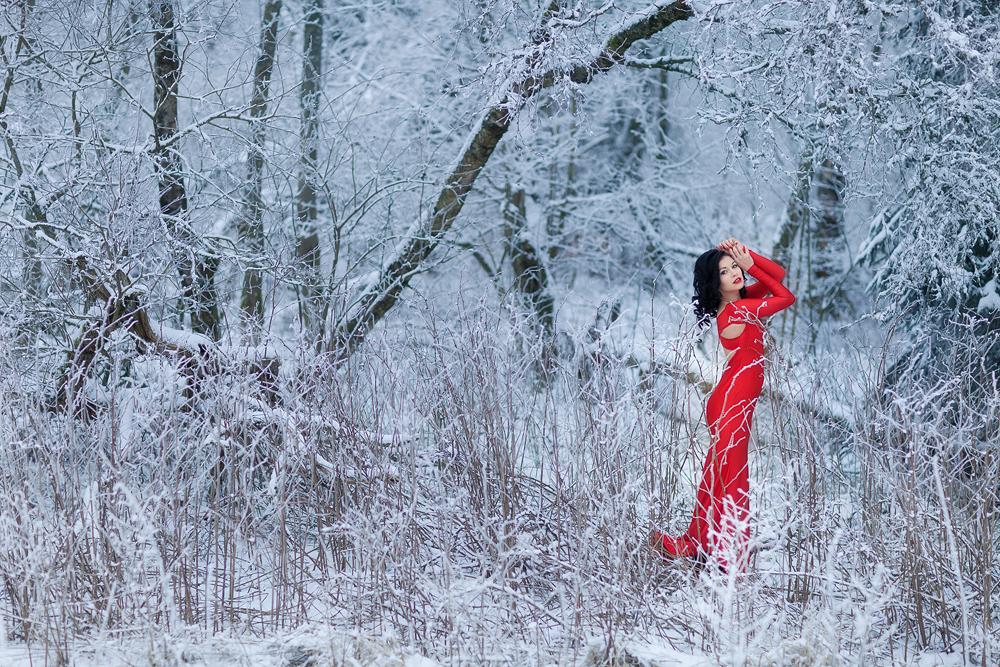Foto zum Blogartikel - Rotes Kleid im Schnee
