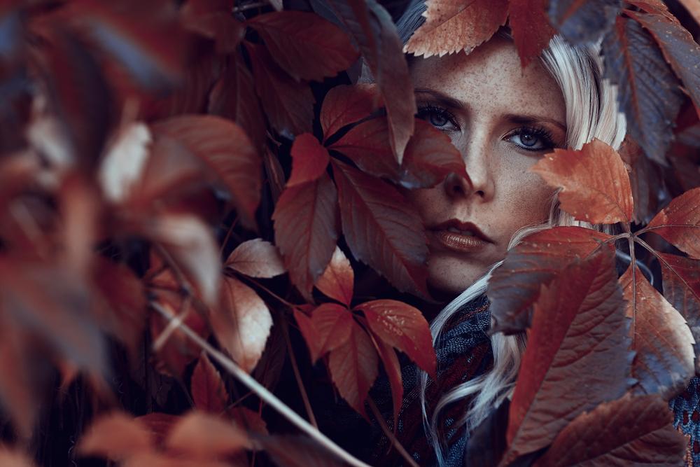 Blogartikel - Bunte Blätter