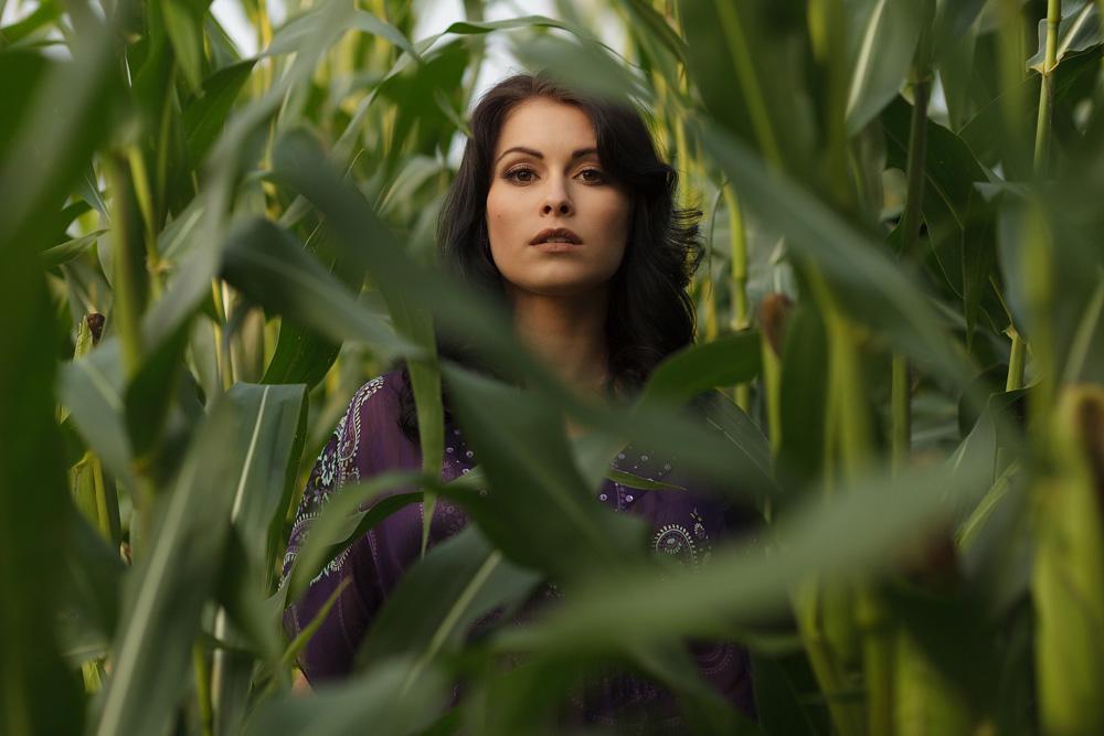 Portrait in einem Maisfeld