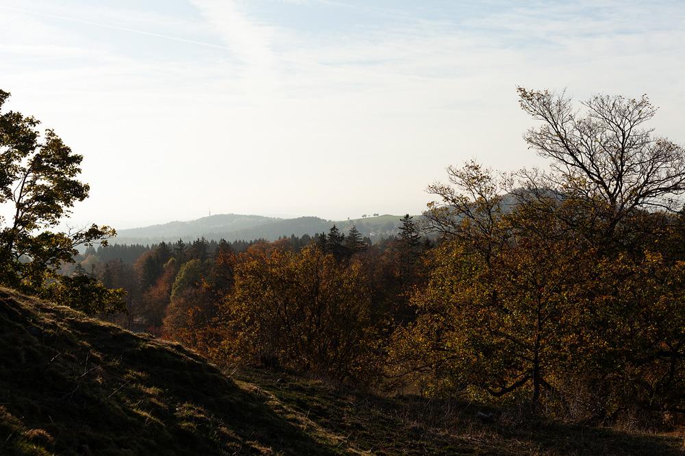 Herbstaufname in der Rhön