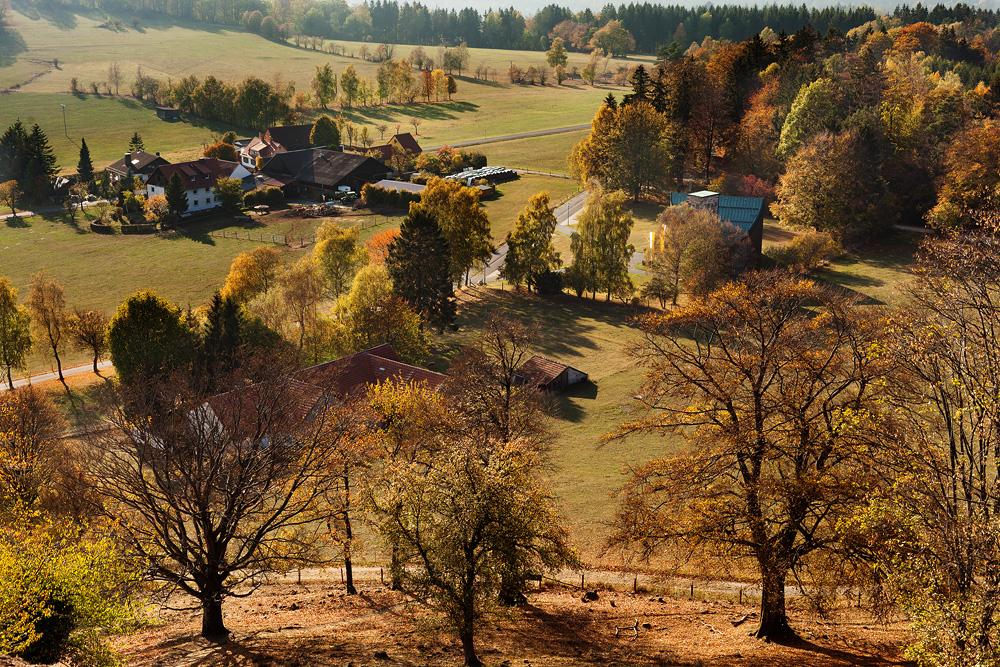 Herbstaufnahme vom Wachtküppel in der Rhön